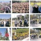20121019「二十世紀が丘」ゆいの花公園-1