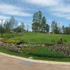 二十世紀が丘-ゆいの花公園イベント-20120511-002